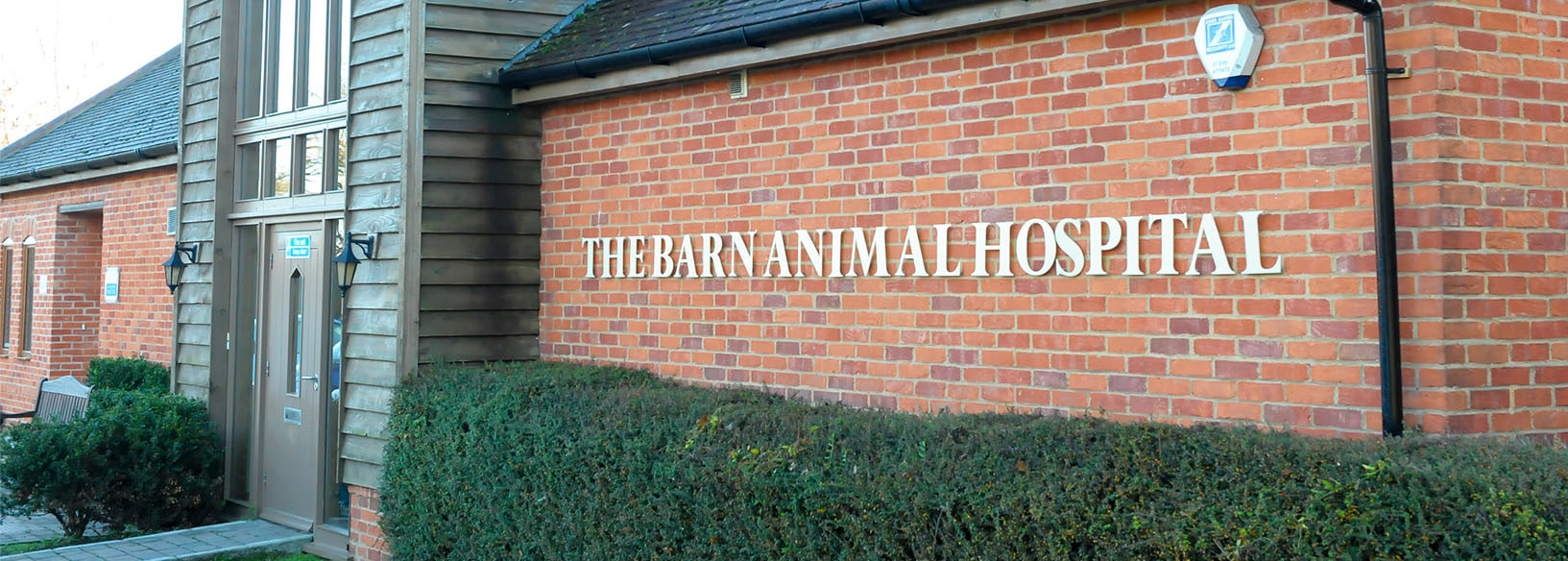 The Barn Animal Hospital - Vets in Basingstoke