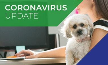 Corona-virus FAQs